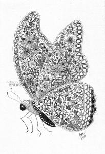 web-Butterfly-2