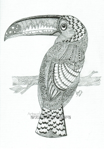 web-Kingfisher-2