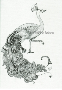web-peacock-1