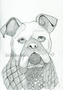 web-Pug