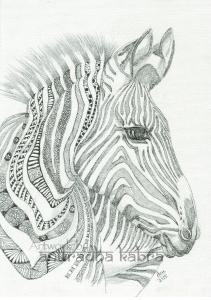 web-Zebra