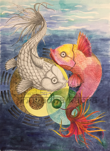 Koi Fish - YinYang