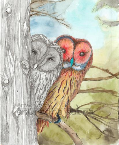 Yin-Yang-owls
